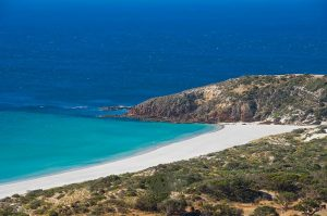 Kangaroo Island North Coast Tour